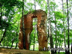 Руины дворца Тышкевичей с тыла