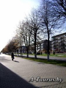 Улица в Борисове с многоэтажной застройкой